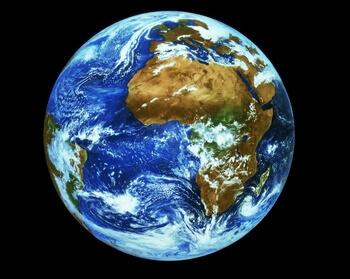 Terre, unicité, animaux